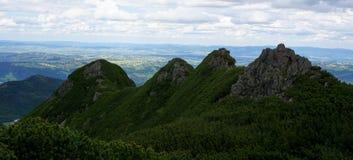 用矮小的杉木报道的四个岩石峰顶 免版税库存图片