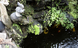 用石头装饰的人为池塘 免版税库存图片