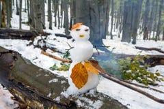 用秋叶装饰的一名可爱的雪人妇女 免版税库存照片