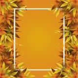 用秋叶装饰的框架 皇族释放例证
