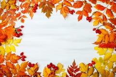 用秋叶装饰的白色木桌 秋天背景复制空间 库存照片