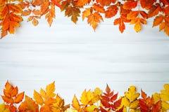 用秋叶装饰的白色木桌 秋天背景复制空间 免版税图库摄影