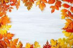 用秋叶装饰的白色木桌 秋天背景复制空间 免版税库存图片