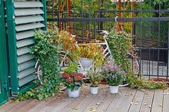 用秋天花装饰的自行车 库存图片