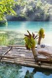 用筏子运送在蓝色盐水湖,牙买加的银行 库存图片