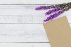用紫罗兰色鹿舌草装饰的空白的棕色卡片开花 免版税库存照片