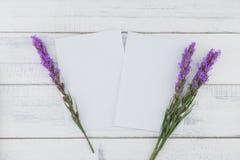 用紫罗兰色鹿舌草装饰的空白的白色卡片开花 库存图片