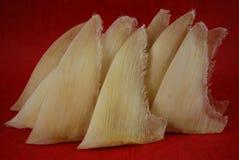 用繁体中文的干鲨鱼飞翅购物 免版税库存图片