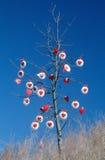用红色重点装饰的结构树 库存照片