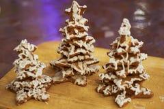 用结冰装饰的自创姜饼 库存图片