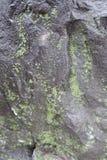 用绿色地衣盖的黑石头 免版税库存照片