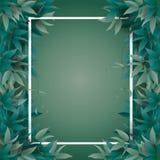 用绿色密林叶子装饰的框架 皇族释放例证