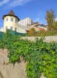 用绿色常春藤盖的房子庄园 库存图片
