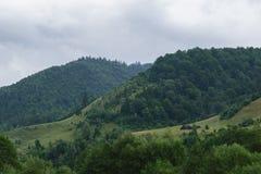 用绿色森林和风雨如磐的云彩天空盖的青山 免版税库存照片