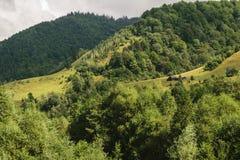 用绿色森林和风雨如磐的灰色多云天空盖的青山 免版税库存照片