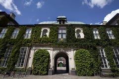 用绿色植物包括的老房子在哥本哈根-丹麦 库存照片