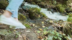 用绿色水多的草盖的美妙的小径,冷,快速的水小山小河划分疆土成零件 股票录像