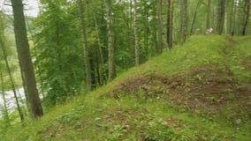 用绿草和树其次盖的德国沟槽在俄国森林里在超过在世界大战以后的70年以后 股票视频