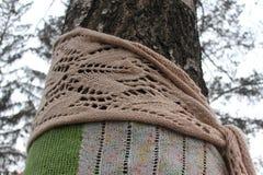 用羊毛围巾盖的树 免版税库存图片