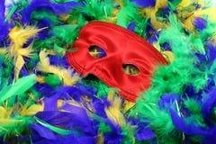 用羽毛装饰万圣节屏蔽  库存照片