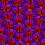 用羽毛装饰与作为异乎寻常的bir被称呼的弯曲的线的被称呼的背景 向量例证