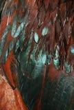 用羽毛装饰呈虹彩 免版税库存图片