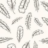 用羽毛装饰无缝的模式 手拉的葡萄酒 库存图片