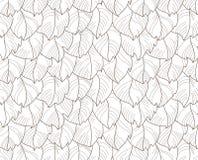 用羽毛装饰无缝的模式 免版税库存图片