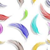 用羽毛装饰无缝的纹理 图库摄影
