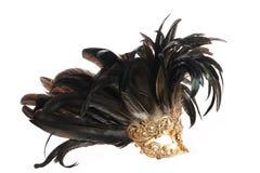 用羽毛装饰的屏蔽 库存照片