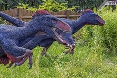 用羽毛装饰的恐龙现实模型  免版税库存图片