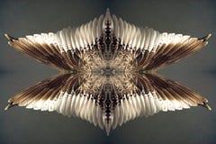 用羽毛装饰的梦想 免版税库存照片