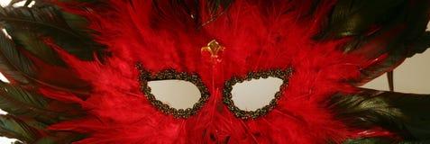 用羽毛装饰的gras mardi屏蔽 库存照片