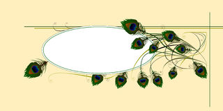 用羽毛装饰被发行的登记 库存照片