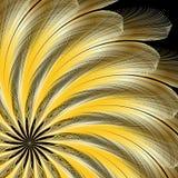 用羽毛装饰金黄 图库摄影