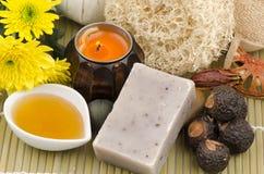 用肥皂擦洗坚果,肥皂莓果,肥皂坚果树(肥皂) 图库摄影