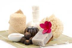用肥皂擦洗坚果,肥皂莓果,肥皂坚果树(肥皂) 库存图片