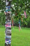 用色的丝带装饰的树 免版税图库摄影