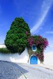 用花和绿叶装饰的一部分的房子被修补的街道 库存图片