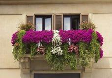 用花喇叭花装饰的阳台 免版税库存图片