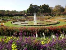 用花装饰的喷泉 库存图片