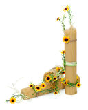 用花装饰的意大利意粉查出 免版税库存照片