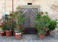 用花装饰的老木门,托斯卡纳,意大利 免版税库存图片