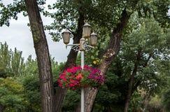 用花装饰的装饰灯笼 免版税图库摄影