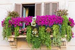 用花装饰的阳台 免版税图库摄影