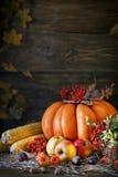 用菜、南瓜和秋叶装饰的木桌 秋天背景特写镜头上色常春藤叶子橙红 Schastlivy冯Thanksgiving 免版税库存照片