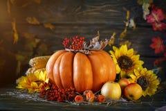 用菜、南瓜和秋叶装饰的木桌 秋天背景特写镜头上色常春藤叶子橙红 Schastlivy冯Thanksgiving 库存照片