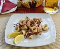 用菜充塞的油煎的乌贼 鱼食物荷兰芹牌照烤海运 免版税库存图片