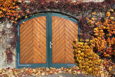 用藤本植物和五颜六色的叶子盖的议院 免版税库存图片