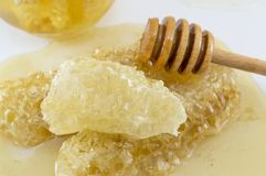 用蜂蜜和浸染工匙子盖的蜂窝在白色 免版税库存图片